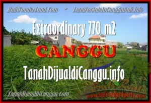 Affordable PROPERTY 770 m2 LAND IN CANGGU BALI FOR SALE TJCG148