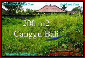 FOR SALE Magnificent PROPERTY 200 m2 LAND IN CANGGU TJCG190