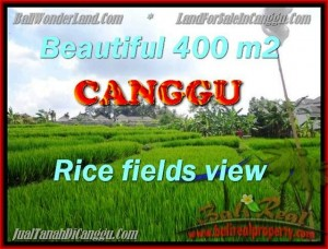 Beautiful PROPERTY LAND FOR SALE IN CANGGU TJCG156