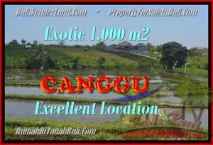 Magnificent 1.000 m2 LAND SALE IN CANGGU TJCG168