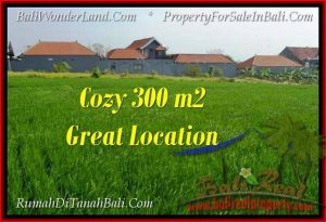 FOR SALE Exotic 300 m2 LAND IN CANGGU TJCG186