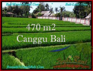 FOR SALE LAND IN Canggu Pererenan TJCG187