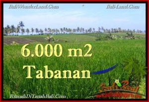LAND IN Tabanan Selemadeg BALI FOR SALE TJTB267