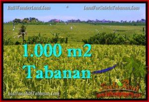 Beautiful PROPERTY 1,000 m2 LAND IN Tabanan Selemadeg FOR SALE TJTB266