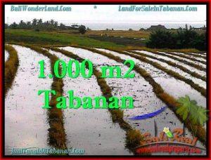 Affordable PROPERTY 1,000 m2 LAND SALE IN TABANAN BALI TJTB261