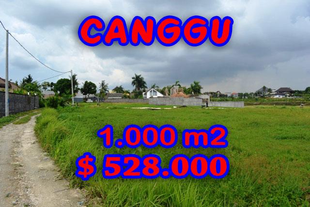 Land for sale in Canggu Bali 10 Are Ares in Canggu Brawa