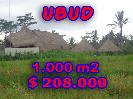 Land in Ubud Bali For sale 10 Ares in close to Ubud Center