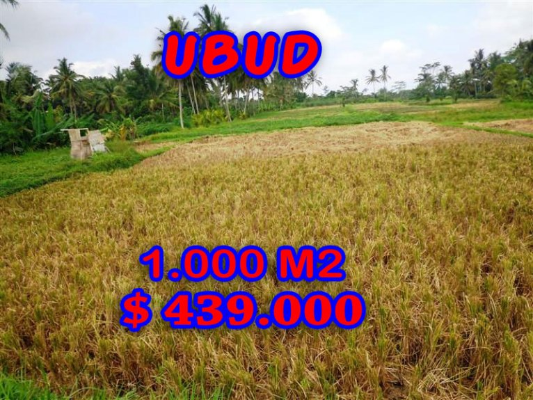 Land for sale in Bali, exotic view in Ubud Center Bali – TJUB235