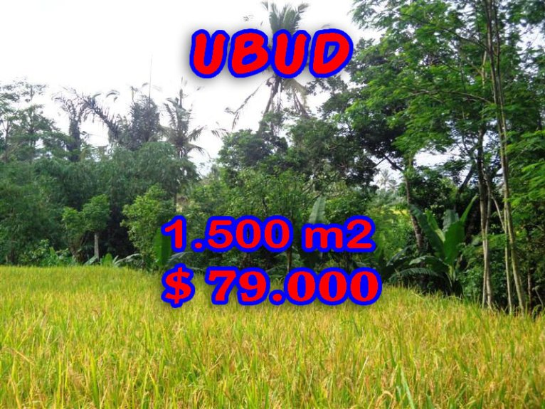 Land in Bali for sale, Spectacular view in Ubud Bali – TJUB243