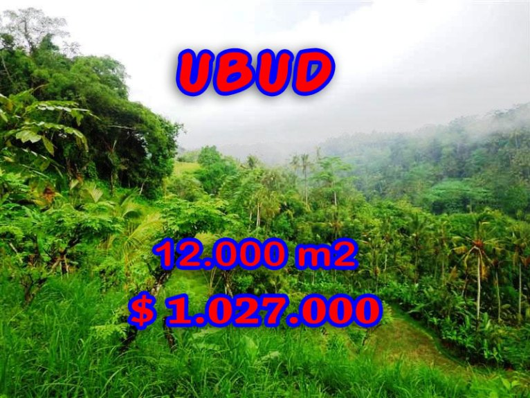 Land for sale in Bali, exceptional view in Ubud Tegalalang – TJUB254