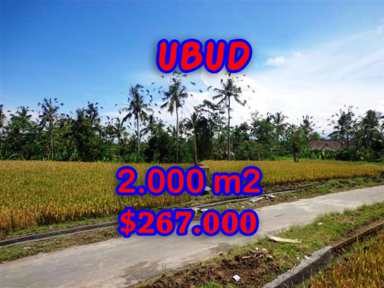 Land in Bali for sale, great view in Ubud Bali – TJUB246
