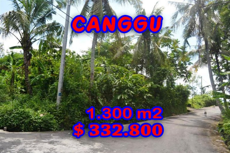 Land in Bali for sale, fantastic view in Canggu Bali – TJCG097