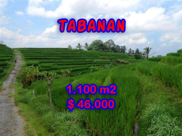 Land for sale in Bali, spectacular view in Tabanan Bali – TJTB052