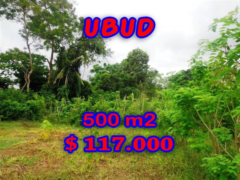 Stunning Land for sale in Bali, rice fields view in Ubud Bali – TJUB283
