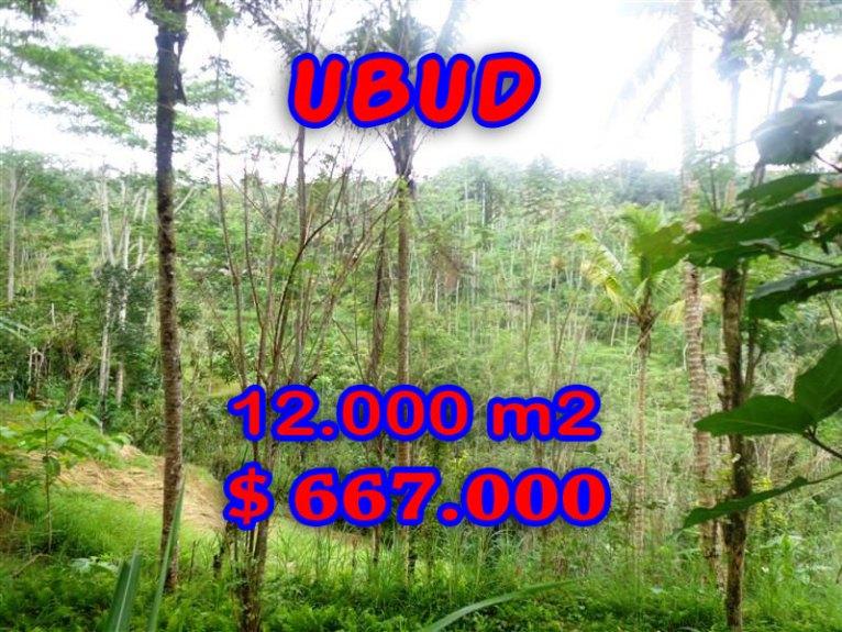Land for sale in Bali, exotic view in Ubud Tampak Siring Bali – TJUB275