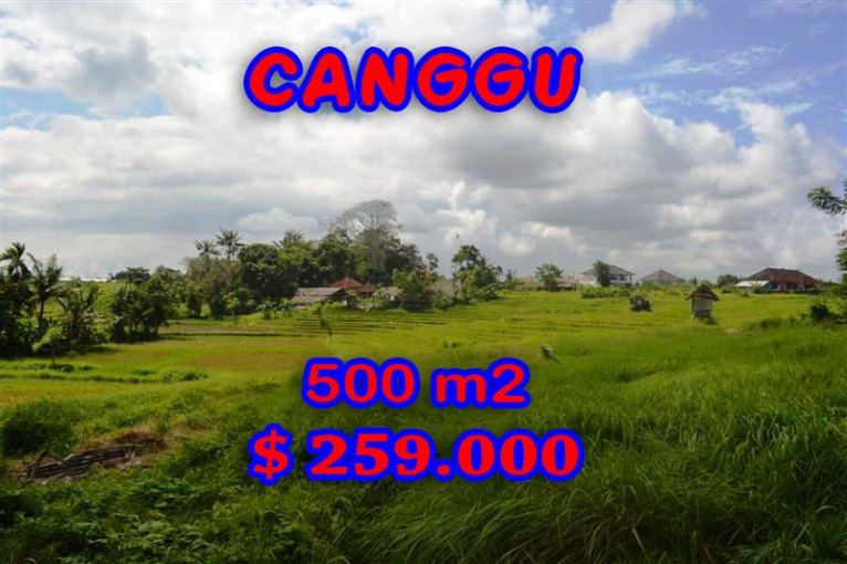 Land for sale in Bali, Spectacular rice paddy view in Canggu Batu Bolong – TJCG116