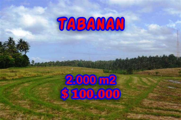 Land in Bali for sale, great view in Tabanan Bali – TJTB055