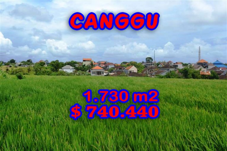 Magnificent Property for sale in Bali, land for sale in Canggu Bali  – TJCG095
