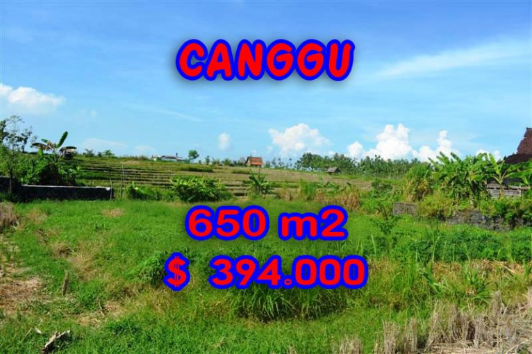 Bali Property for sale, Stunning land for sale in Canggu Bali  – 650 sqm @ $ 606
