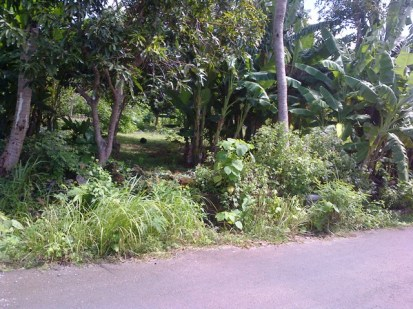 Land for sale in Jimbaran