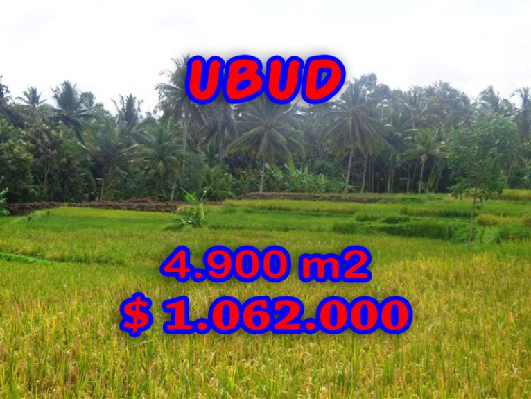 Fantastic Land in Bali for sale, Amazing paddy fields view in Ubud Center – TJUB278