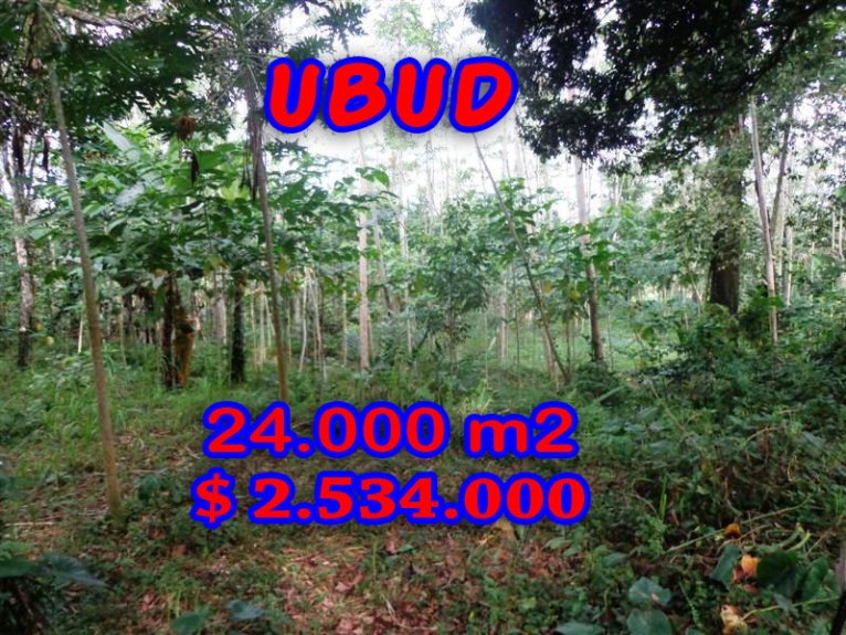 Land in Bali for sale, Spectacular view in Ubud Bali – TJUB263