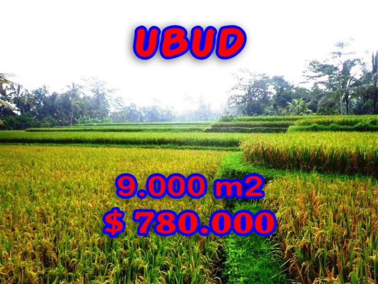 Magnificent Property for sale in Bali, land for sale in Ubud Bali  – TJUB264