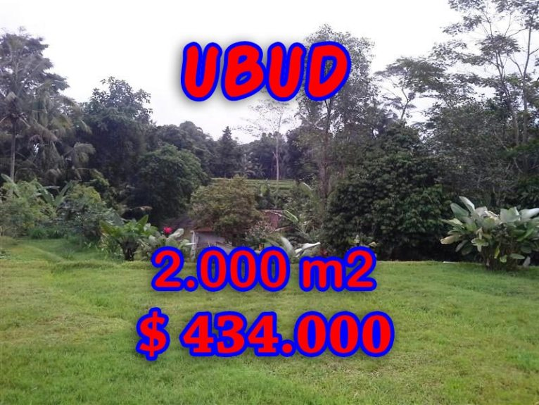 Fantastic Land for sale in Bali, rice paddy view in Ubud Tegalalang– TJUB298