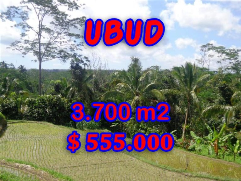 Magnificent Land for sale in Bali, paddy view by the river in Ubud Tegalalang Bali – TJUB293