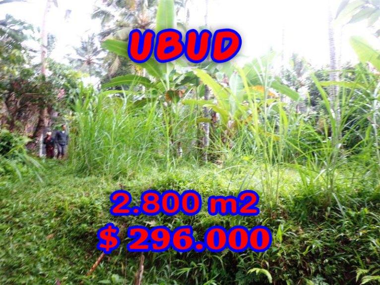 Land for sale in Bali, wonderful view in Ubud Bali – TJUB285