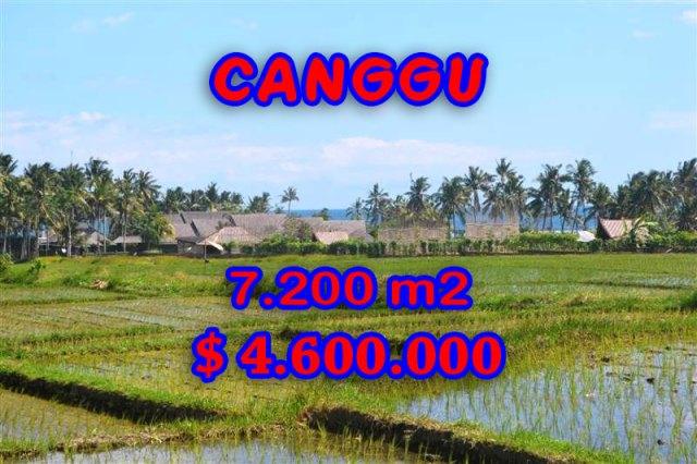 Land for sale in Canggu land