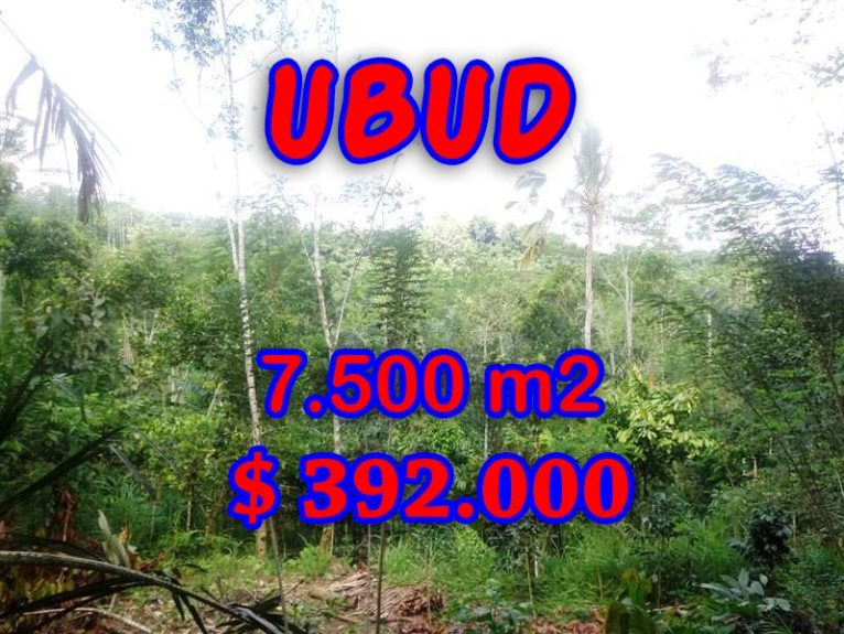 Land for sale in Bali, astonishing view in Ubud Tegalalang Bali – TJUB290