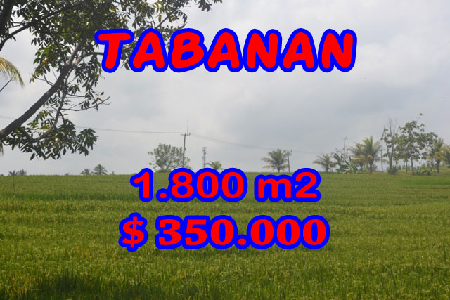 Land in Bali for sale, extraordinary view in SOKA TABANAN – TJTB083