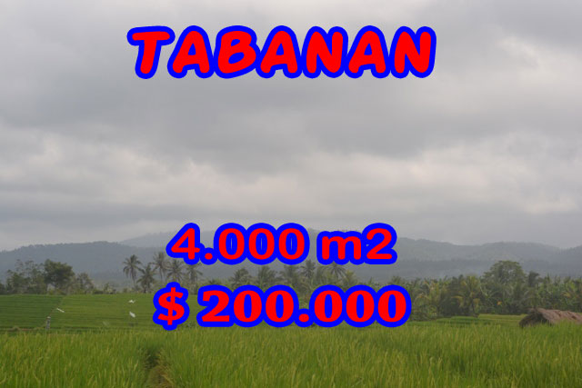 Property in Bali for sale, Astonishing land for sale in Tabanan Bali – TJTB084