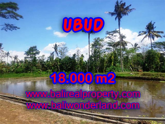 Magnificent Property for sale in Bali, land for sale in Ubud Bali  – 18,000 sqm @ $ 83