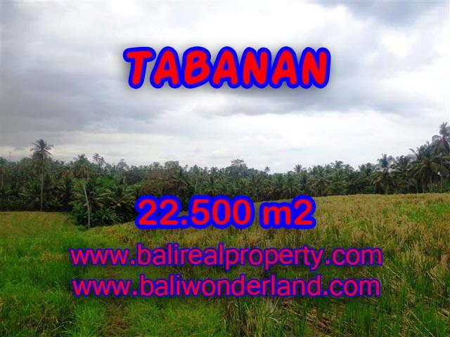 Land in Bali for sale, fantastic view in Tabanan Bali – TJTB066
