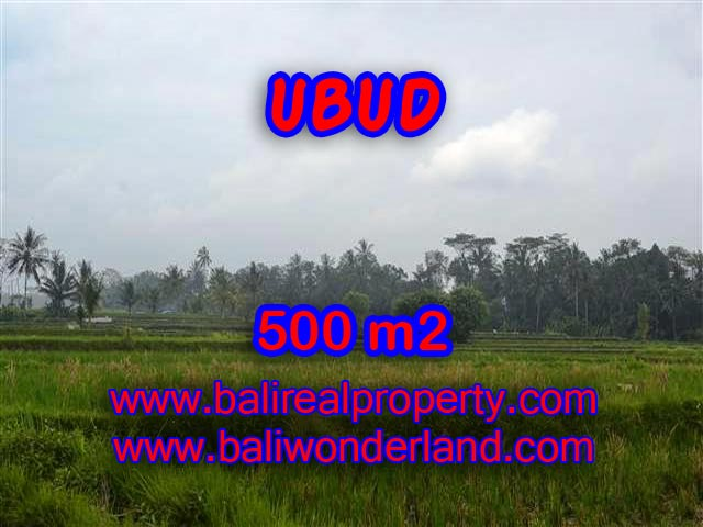 Stunning Land for sale in Bali, Mountain and paddy field view in Ubud Bali – TJUB363