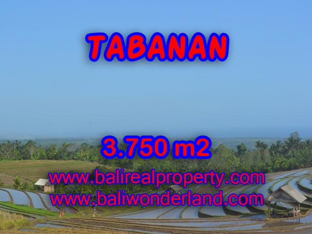 Land in Tabanan Bali for sale, Incredible view in TABANAN – TJTB074
