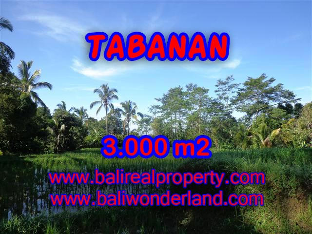 Land for sale in Tabanan Bali, Wonderful view in Tabanan Penebel – TJTB110