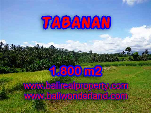 Land for sale in Tabanan, Stunning view in Tabanan Selemadeg Bali – TJTB106