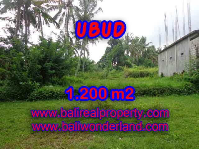 Amazing Land in Bali for sale in Ubud Center Bali – TJUB399