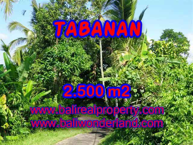 Land in Bali for sale, extraordinary view in Tabanan Penebel – TJTB122