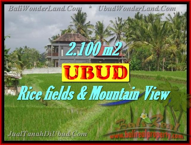 Land in Ubud Bali for sale, Exotic view in Ubud Tegalalang – TJUB423