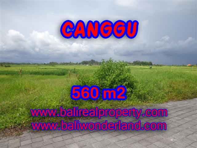 Land for sale in Canggu Bali, Wonderful view in Canggu Cemagi – TJCG138