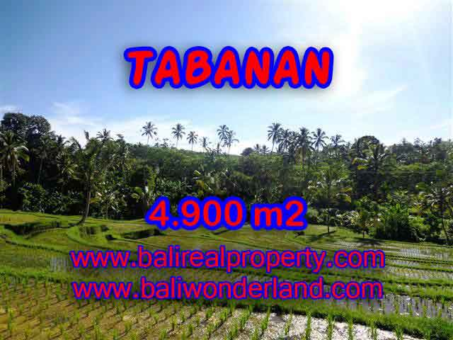 Land for sale in Tabanan, Magnificent view in Tabanan Penebel Bali – TJTB111