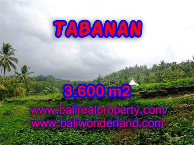 Land in Bali for sale, astounding view in Tabanan Bali – TJTB117