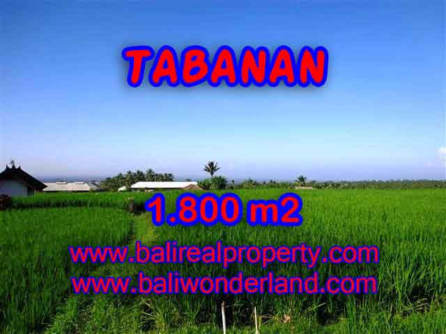 Magnificent Land for sale in Bali, Mountain and ricefields view in Tabanan Penebel Bali – TJTB119