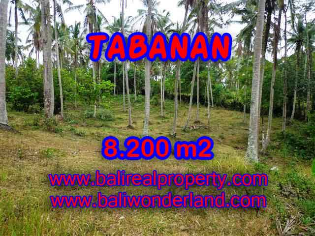 Property in Bali for sale, Astonishing land for sale in Tabanan Bali – TJTB142