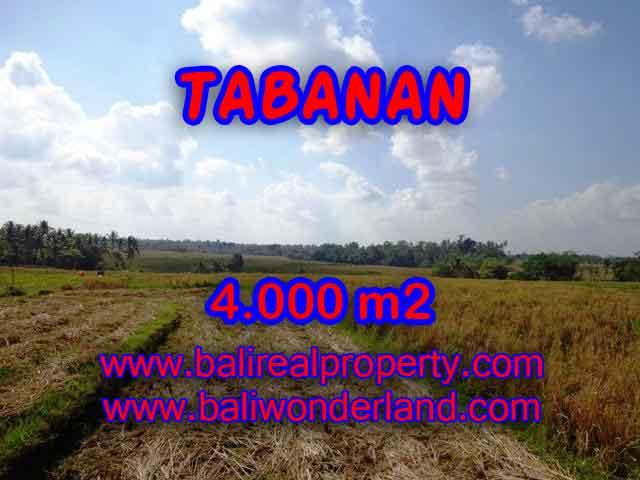 Land in Bali for sale, great view in Tabanan Bali – TJTB132