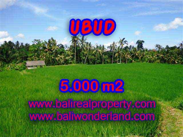 Land in Bali for sale, fantastic view in Ubud Bali – TJUB389